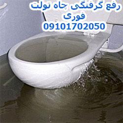 رفع گرفتگی توالت در تهران 09101702050
